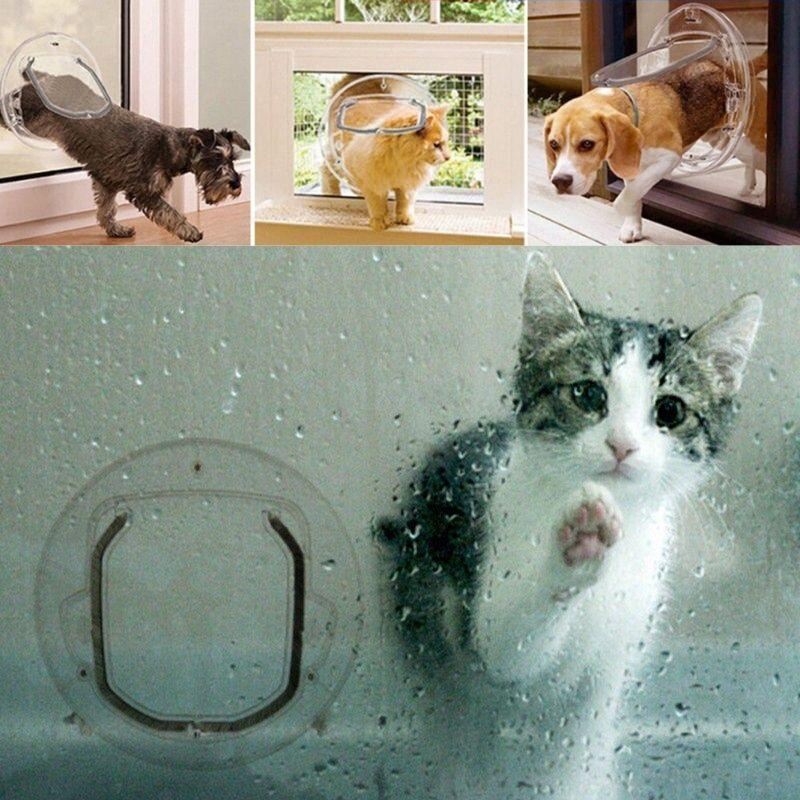 Transparent Pet Door with pets going through it and a bigger image showing a kitten inside the house, next to the transparent pet door whilst it is raining.