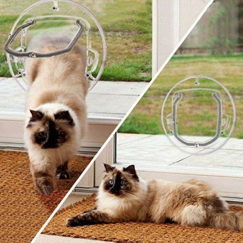 Persian cat going through the transparent Pet Door installed on a glass door