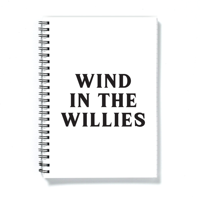 Wind In The Willies A5 Notebook | Funny Notebook, Funny Literary Gifts, Funny Literature Gifts, Wind In The Willows Gifts