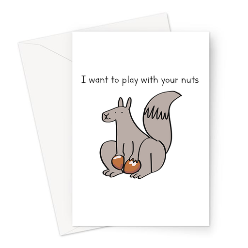 I Want To Play With Your Nuts Greeting Card | Funny Squirrel Holding Nuts Valentines Card, For Him, Husband, Boyfriend, Anniversary, Balls Pun