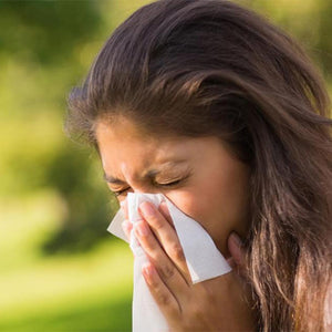TORAL'S HAY FEVER TIPS