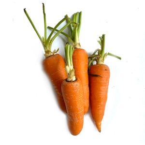 Carrots - Savvy's Online Palengke and Grocery Delivery Philippines