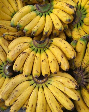 Banana Latundan - Savvy's Online Palengke and Grocery Delivery Philippines