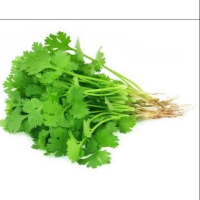 Coriander - Wansoy- Cilantro - Savvy's Online Palengke and Grocery Delivery Philippines