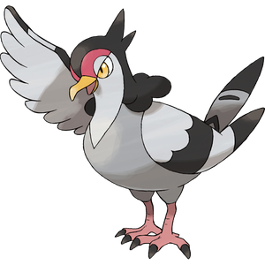 Pokémon Dictionary Definition 0520 Tranquill