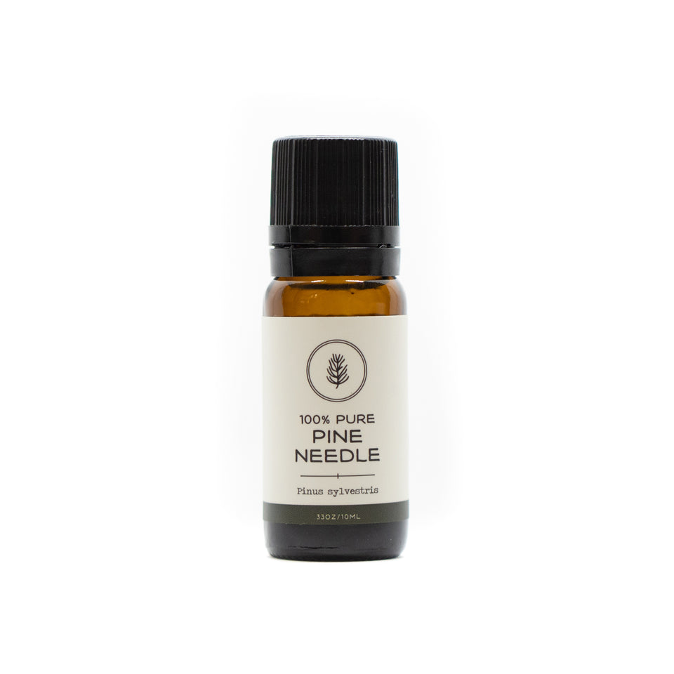 Pine Essential Oil | 10ml
