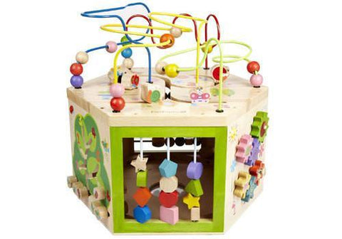 EverEarth - 7 in 1 Garden Activity Cube