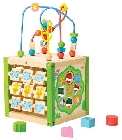 EverEarth - My First Multi - Play Activity Cube