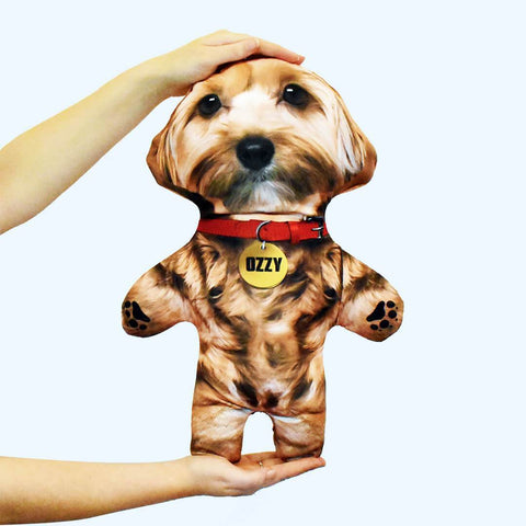 Ozzy personalised Pet Mini Me doll with gold fur