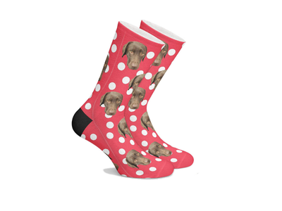 Personalized Pet SocksCircles