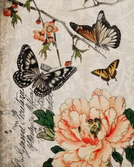 Butterfly Floral Roycycled Decoupage Paper Butterfly Images  Script and Florals