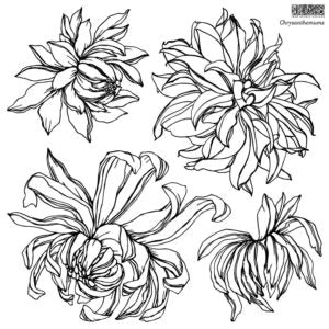 Chrysanthemums Stamp **NEW!  Coming Soon!**
