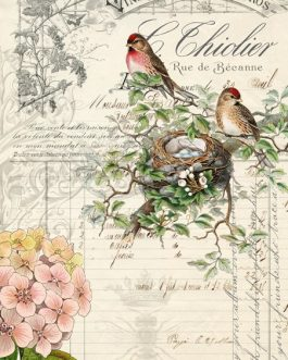 Recycled Papers Bird Ephemera Decoupage Papers Farmhouse Inspired