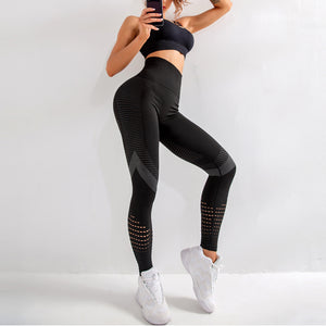 High Waist Fitness Gym Legging