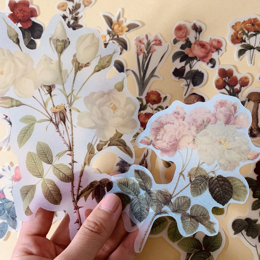 Translucent Retro Large Botanical Flower Sticker Set 40 Sheets - shop Stationery & Gifts store online