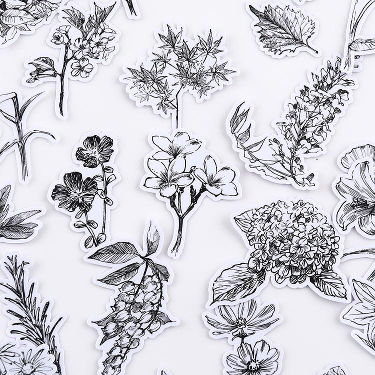 52pcs Sketch Floral Stickers | Black and White Flower Journal Planner Stickers | Translucent vs. White Background - shop Stationery & Gifts store online