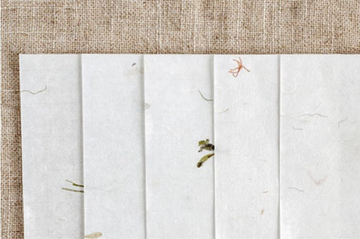 Mulberry Paper | Textured Thin Flower Papers - shop Stationery & Gifts store online