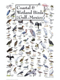 Coastal and Wetland Birds of the Gulf of Mexico - 550 Piece Puzzle - Made in the USA