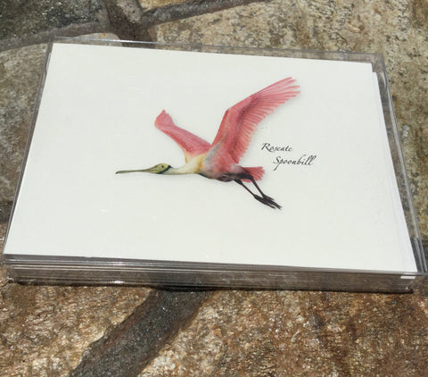 Flying Roseate Spoonbill Premium Boxed Card Set