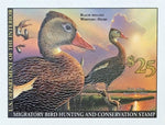 Federal Duck Stamp - Purchase to Support Wildlife and Habitat Conservation