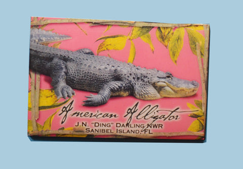 Wildlife Refrigerator Magnets - Alligator
