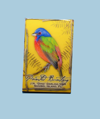 Wildlife Refrigerator Magnets - Painted Bunting