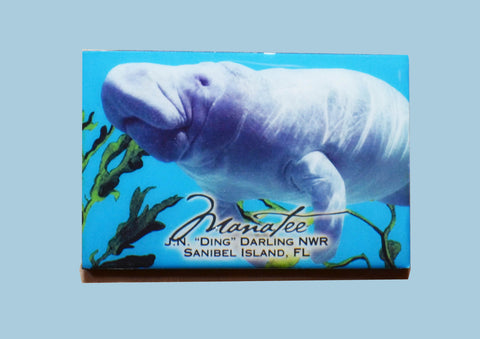 Wildlife Refrigerator Magnets - Manatee
