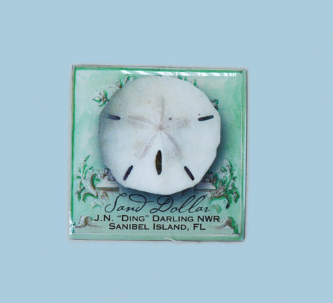 Wildlife Refrigerator Magnets - Sand Dollar