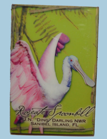 Wildlife Refrigerator Magnets - Spoonbill