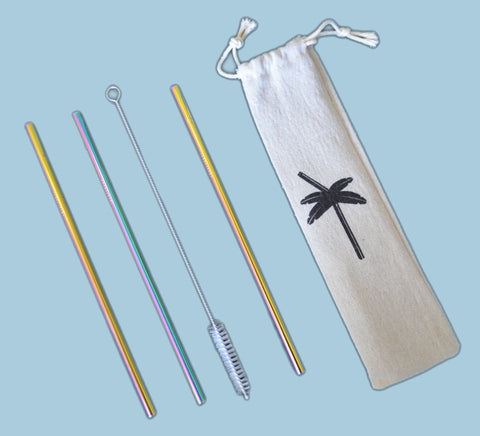 Stainless Steel Drinking Straw 3 Pack & Cleaner