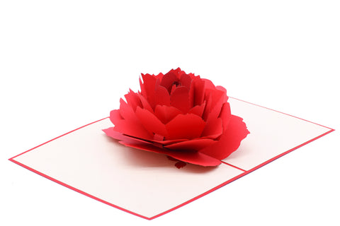 Red Rose Pop-Up Card