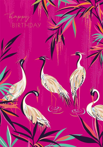 Cranes Happy Birthday Card