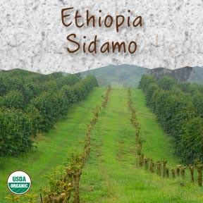Organic Ethiopia Sidamo Fair Trade Coffee - Coffee At Lulus On N