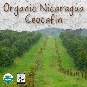 Organic Nicaragua 'Ceocafen' Fair Trade Coffee - Coffee At Lulus On N
