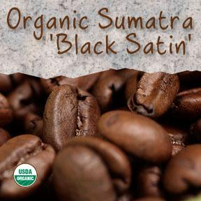 Organic Sumatra 'Black Satin Roast' Fair Trade Coffee - Coffee At Lulus On N