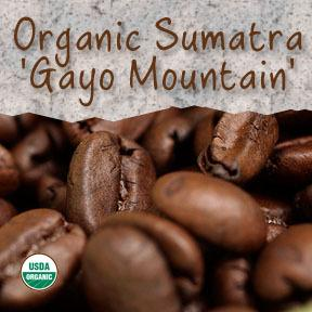 Organic Sumatra 'Gayo Mountain' Fair Trade Coffee - Coffee At Lulus On N