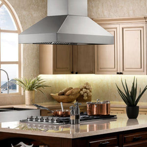 ZLINE 30-48 in. Remote Dual Blower Island Range Hood - (597I-RD-30) - Bison Kitchens