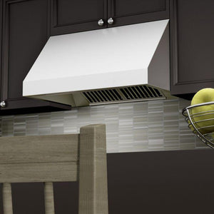 ZLINE 30-48 in. Stainless Steel Under Cabinet Range Hood (685-30) - Bison Kitchens