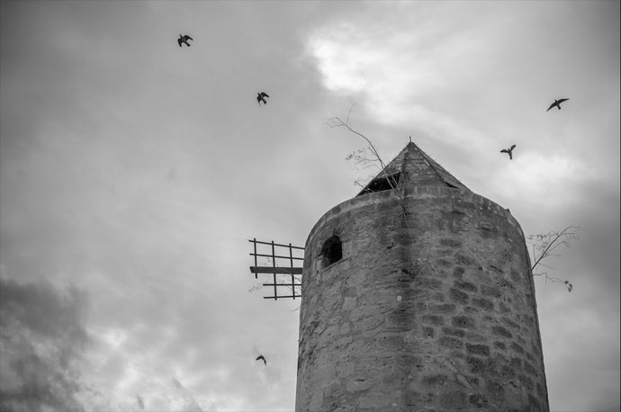 Old Town Palma Mallorca Windmill - T.Wilsher Photography
