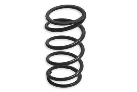 Primary Clutch Springs