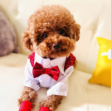 Load image into Gallery viewer, Dog Formal Shirt