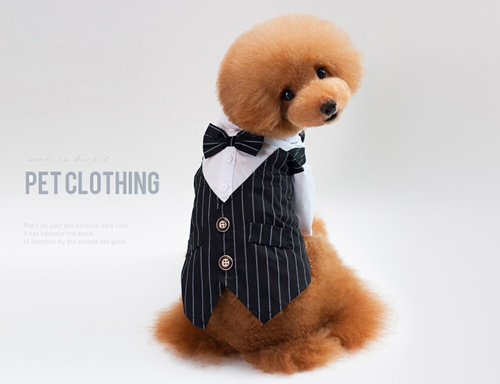 Dog Formal Shirt
