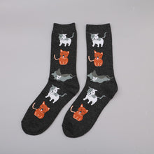 Load image into Gallery viewer, Animal Socks