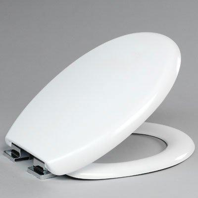(8402WS) Curve White Toilet Seat - Standard Hinges