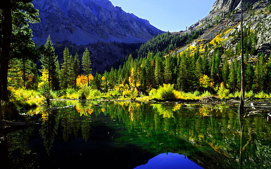 Lundy Canyon Pond