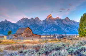 barn, wyoming, landscape, moulton, national, mountain, grand, park, scenic, sky, teton, nature, mormon, sunrise, summer, western, range, jackson, beautiful, old, blue, hole, travel, morning, grass, scenery, rustic, west, row, tourism, historic, building, background, snow, outdoors, ranch, wood, usa, tetons, prairie, farm, america, grand teton national park, fence, field, homestead, outdoor, rugged, wooden, architecture