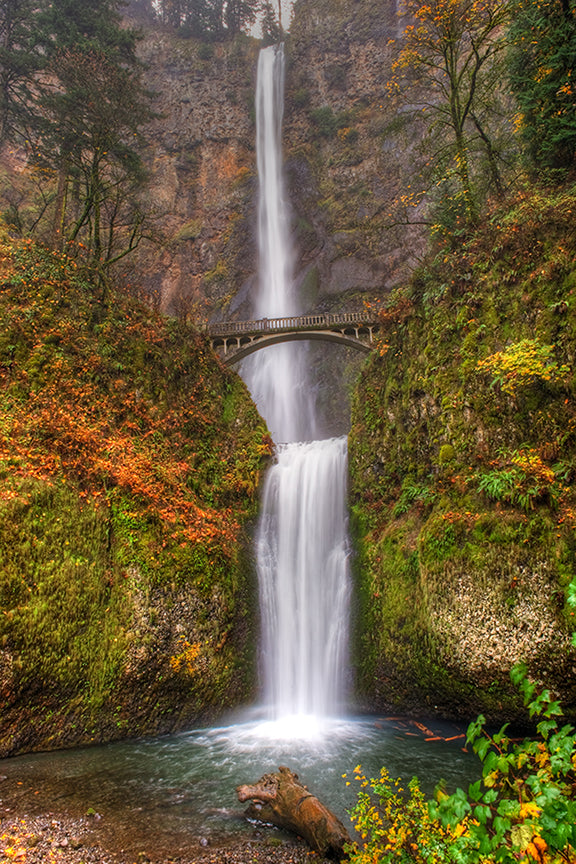 waterfall, oregon, water, green, landscape, bridge, nature, river, scenic, gorge, forest, travel, falls, scenery, multnomah, beautiful, columbia, park, usa, cliff, foliage, outdoors, autumn, cascade, portland, multnomah falls, color, beauty, famous, tree, trees, america, spring, leaves, yellow, fall, stone, stream, brown, view, colorful, moss, pacific, rock, tourist, northwest, flowing, natural, states, united