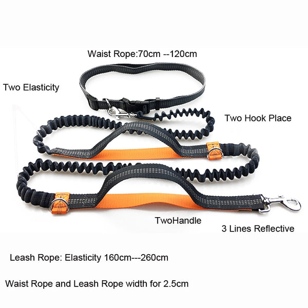 PET DOG RETRACTABLE HANDS FREE RUNNING LEASH WITH REFLECTIVE LINES FOR SAFETY
