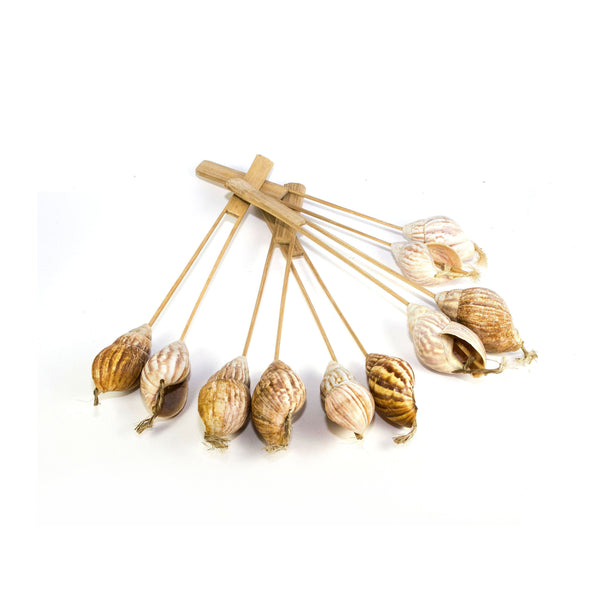 NATURAL SNAIL SHELL BAMBOO RATTLE