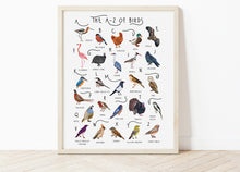 Load image into Gallery viewer, A-Z of Birds Poster